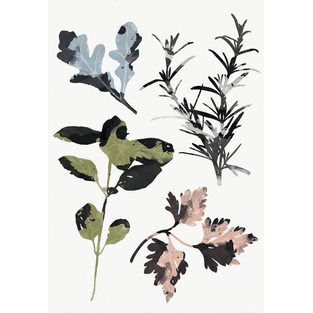 Illustration Les Herbes